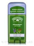 Lavender & Aloe Deodorant Stick - 1.7 oz (48 Grams)