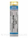 Ledum Palustre 30CH - 140 Granules (5.5g)