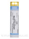Ledum Palustre 5CH - 140 Granules (5.5g)