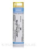 Ledum Palustre MK - 140 Granules (5.5g)