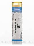Ligamentinum 4CH - 140 Granules (5.5g)