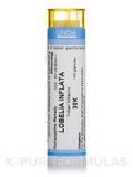 Lobelia Inflata 30K - 140 Granules (5.5g)