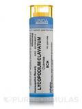 Lycopodium Clavatum 9CH - 140 Granules (5.5g)