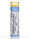 Magnesium Phosphoricum 6CH - 140 Granules (5.5g)