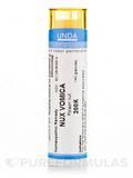 Nux Vomica 200K - 140 Granules (5.5g)