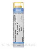 Nux Vomica 6CH - 140 Granules (5.5g)