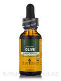 Olive Leaf - 1 fl. oz (30 ml)