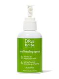 Oral Healing Spray, Mint - 4 fl. oz (118.3 ml)