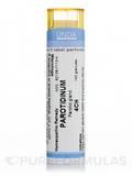 Parotidinum 4CH - 140 Granules (5.5g)
