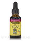 Periwinkle Herb Extract - 1 fl. oz (30 ml)