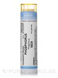 Phosphorus 15CH - 140 Granules (5.5g)