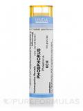 Phosphorus 6CH - 140 Granules (5.5g)