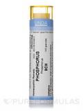 Phosphorus 9CH - 140 Granules (5.5g)