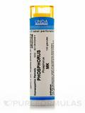Phosphorus MK - 140 Granules (5.5g)