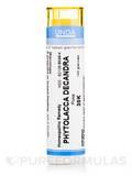 Phytolacca Decandra 30K - 140 Granules (5.5g)