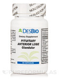 Pituitary Anterior Lobe - 60 Capsules
