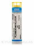 Plumbum Metallicum 30CH - 140 Granules (5.5g)