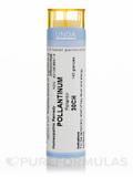 Pollantinum 30CH - 140 Granules (5.5g)