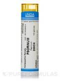 Psorinum 200CH - 140 Granules (5.5g)