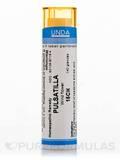 Pulsatilla 15CH - 140 Granules (5.5g)