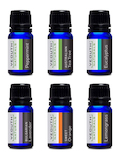 Pure Essential Oil Starter Aromatherapy Set of Six - 6 Bottles