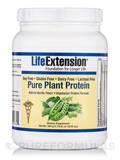 Pure Plant Protein Vegetarian Formula (Vanilla) - 19.05 oz (540 Grams)
