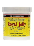 Ultra Mega Strength Royal Jelly in Honey (675 mg per serving) - 21 oz (595 Grams)