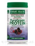 PureGreen Protein Mixed Berry 16 oz (452.5 Grams)