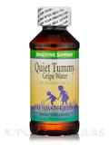 Quiet Tummy™ Gripe Water - 4 fl. oz (120 ml)