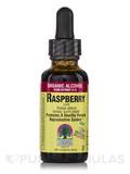 Raspberry Leaf Extract 1 fl. oz