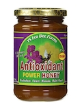 Raw Antioxidant Power Honey - 13.5 oz (383 Grams)