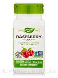 Red Raspberry Leaves 480 mg 100 Capsules