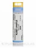 Rumex Crispus 200K - 140 Granules (5.5g)