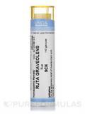 Ruta Graveolens 9CH - 140 Granules (5.5g)