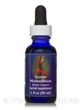 Scarlet Monkeyflower Dropper 1 fl. oz