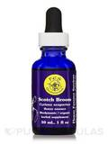 Scotch Broom Dropper 1 fl. oz