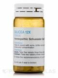 SCHUESSLER - Silicea 12X - 100 Tablets