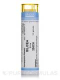 Silicea 200CH - 140 Granules (5.5g)