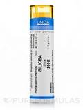 Silicea 200K - 140 Granules (5.5g)