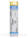 Silicea 7CH - 140 Granules (5.5g)
