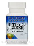 Slippery Elm Lozenges Tangerine 150 mg - 24 Count