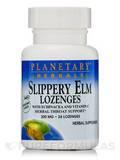 Slippery Elm Lozenges with Echinacea & Vitamin C Tangerine Flavor 200 mg - 24 Count