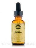 Spleen/Pancreas Self Esteem/Control 1 oz (30 ml)