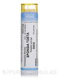 Spongia Tosta 30CH - 140 Granules (5.5g)