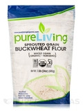 Sprouted Grain Buckwheat Flour (Whole Grain) - 24 oz (680 Grams)