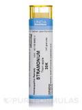 Stramonium 30K - 140 Granules (5.5g)