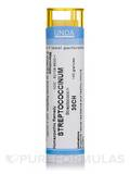 Streptoccocinum 30CH - 140 Granules (5.5g)