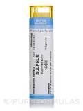Sulfur 15CH - 140 Granules (5.5g)