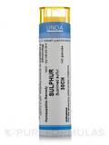 Sulfur 30CH - 140 Granules (5.5g)