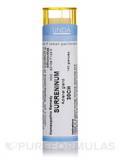 Surreninum 30CH - 140 Granules (5.5g)